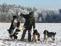 Mrazivý leden 2009, zleva Rendy z Větrné paseky, Diana z Větrné paseky, Kingly Kim Darrem Canis a Source of Power Three Ponds Valley