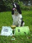 Hubert jako druhý na BZ a jako vítěz slídič na LZ. Hubert je výborný, vysoce temperamentní lovecký pes a dělá mi jen a jen radost.