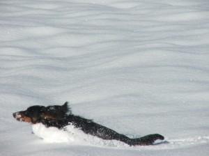 Nevěděla jsem, že se dá ve sněhu i plavat!