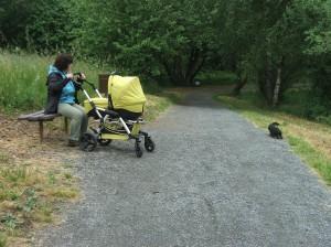 Wega jela se mnou za miminkem a užívala si výlet.