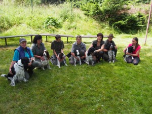 Ingo od Stroupinského potoka (Andy) a jeho potomci - zleva Ingo, Naiky, Orsana, Ornella, Niké, Nero a Nelly.