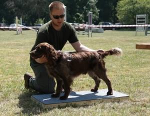 Largo z Větrné paseky - chovný pes