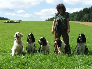Golden - kamarád Kerda, Kerdík, Kara, Reisha a Hubert na výcvikovém dni.