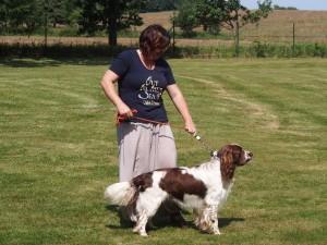Nejhezčí mladší pes - RIKO z Větrné paseky.