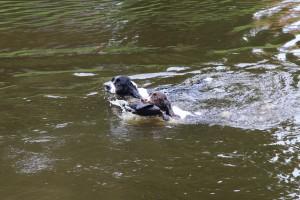 Hubíne, to je moje kachna!!!