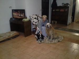 Shaggy- Monty doma s paničkou a starým psím přítelem.