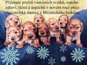Kokrátka z Březnického balkánu.