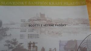 Scotty Slovenský šampión krásy!