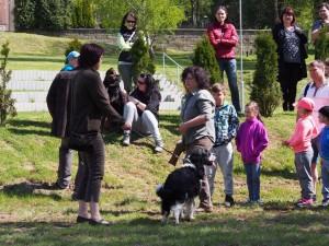 Jarní svod psů 28.4. - předvedení práce loveckého psa
