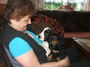 Vigo s novou paničkou ještě doma s jezevčicí Capetkou.