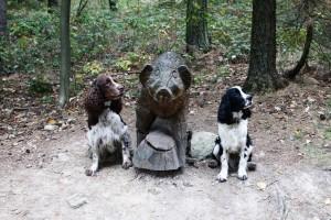 Iran i Vigo dokazují, že jsou stále i psi lovečtí! Nebojí se divočáka!