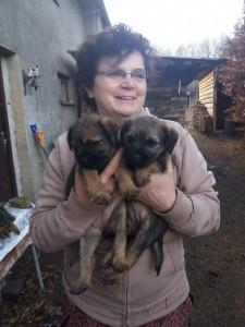 Před odjezdem Maiky do nového domova se přijeli podívat na štěňata majitelé krycího pejska Zara a tak si udělali fotku. Pejsek Monty už v té doby u nového majitele. Vlevo Mia a vlevo Maiky.