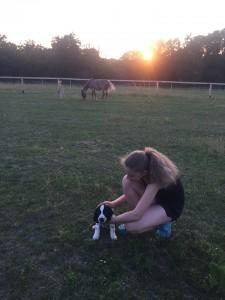 Budu se seznamovat i s koňmi!