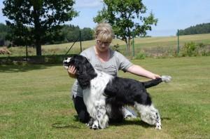 Nejkrásnější pes výstavy - Nero z Větrné paseky s Naďou Markovou