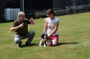 MVDr. Nosek vysvětluje, jak správně předvádět štěně a jak mu vysvětlit, že vůdce je panička a ne ono.