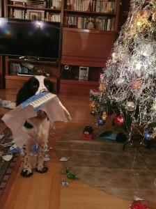 Sofie - Wendy z Větrné paseky rozbaluje dárek.