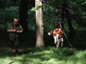 Xaro v záchranařské lanovce, fotí ho páníček.