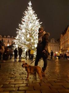 Vánoce 2020 s Kiruškou.