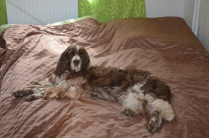 Ebi měla ráda položeníčko v posteli.
