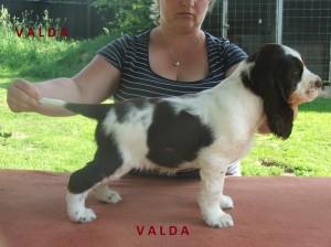 Valda - tragicky zahynul